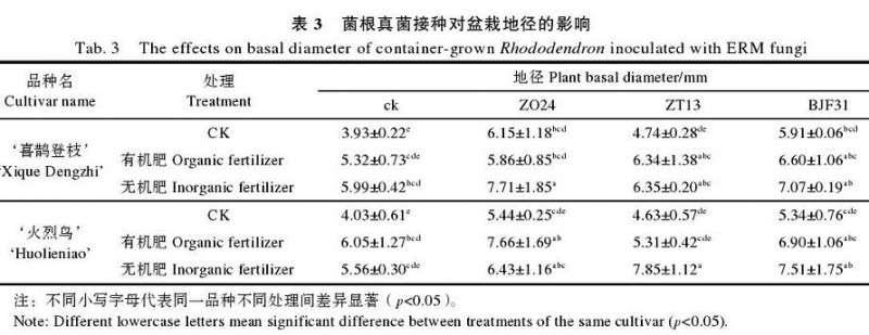 菌根真菌接种对盆栽杜鹃地径生长的影响