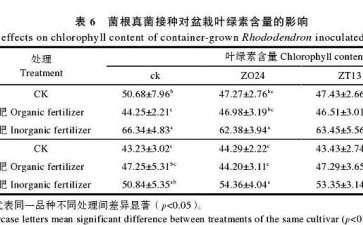 菌根真菌接种对杜鹃盆栽叶绿素含量的影响