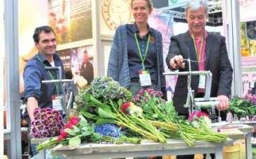 2019年荷兰花卉出口达62亿欧元