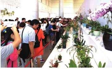 2020 贵州第九届兰花产业发展学术研讨会