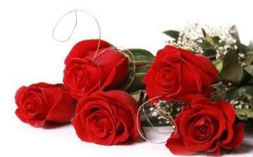 2020年 广州红玫瑰从2.50元降至0.60元1支
