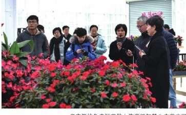 2019年中国花卉协会花卉景观分会成立