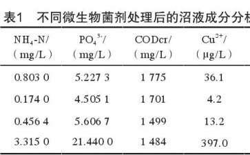不同微生物菌剂对盆栽茄子生长发育的影响