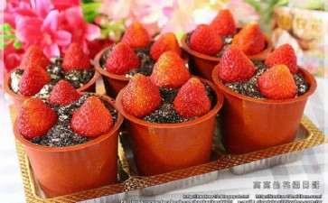 盆栽草莓种类及种植技术指南