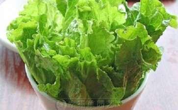 蔬菜盆栽器具和营养土准备