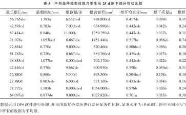 不同品种微型盆栽月季壮苗指数的比较