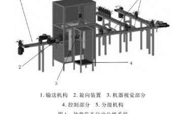 盆栽花卉分级旋向装置开发与试验