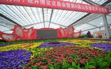 青州市的盆栽花卉产业处于调整转型阶段