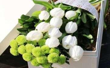 每年的11月都是成都鲜切花市场的销售淡季