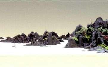 大家怎么评价黄大金先生的山水盆景