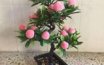 为什么桃树不适合做盆景啊