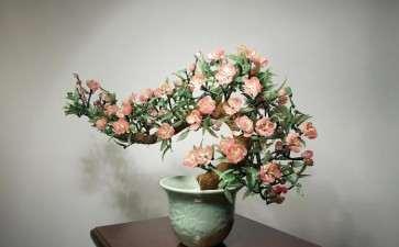 桃花盆景怎样授粉的方法 图片