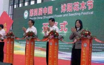 2016年沭阳第二届中国盆景制作比赛