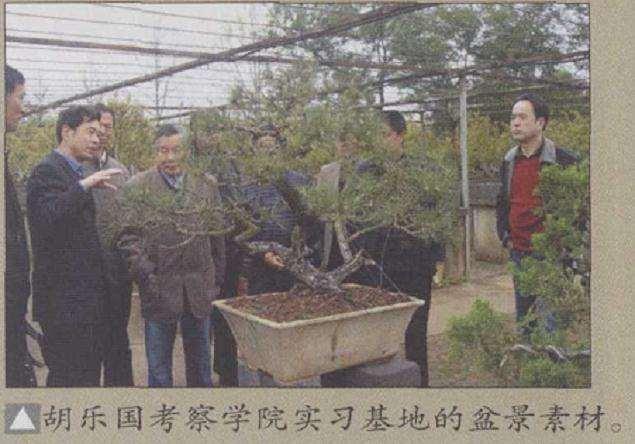 江西农业大学第二届盆景学术研讨会