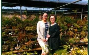 2015年上海植物园举办山野草盆景展