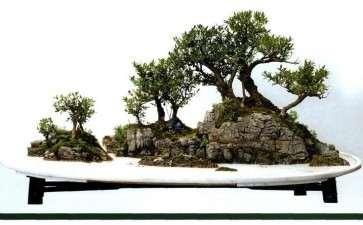 怎么创作自然式山水盆景的方法 图片