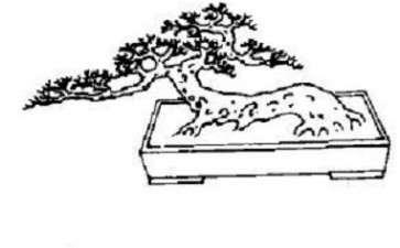 图解 树木盆景造型怎么数量分解