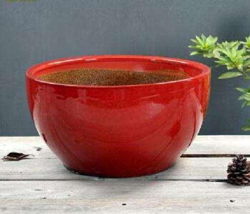 釉陶盆制作盆景 怎么样 图片