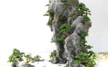 山水盆景怎么制作散点矶石的方法