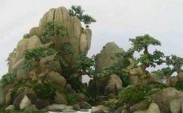 山水盆景怎么雕刻的7个方法