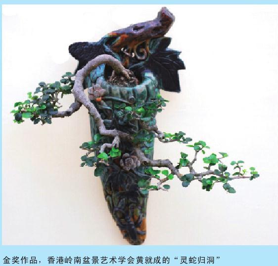 广州国际盆景邀请展