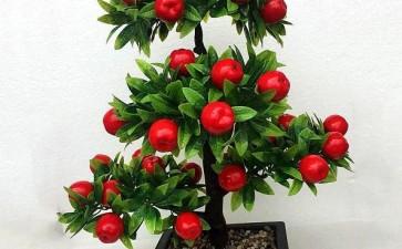 水蜜桃盆栽怎么病虫害防治的3个方法