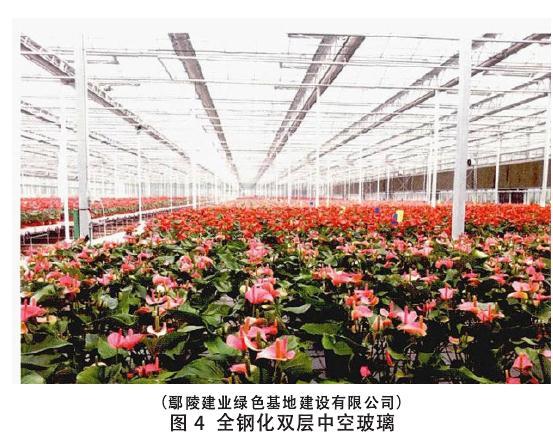 设施盆栽花卉企业调研纪实与产业发展建议