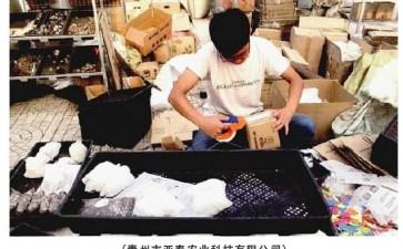 青州花卉盆栽标准化略显滞后