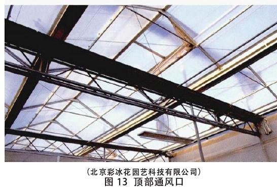 生产盆栽花卉怎么温度调控的方法