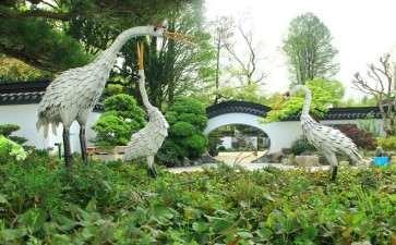 上海植物园与盆景园概况是什么