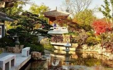 上海盆景园植物景观改造工程概况