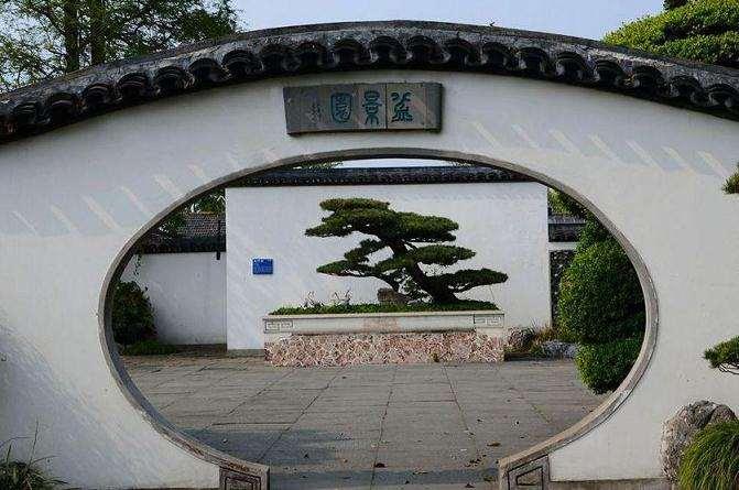 上海盆景园植物景观现状分析