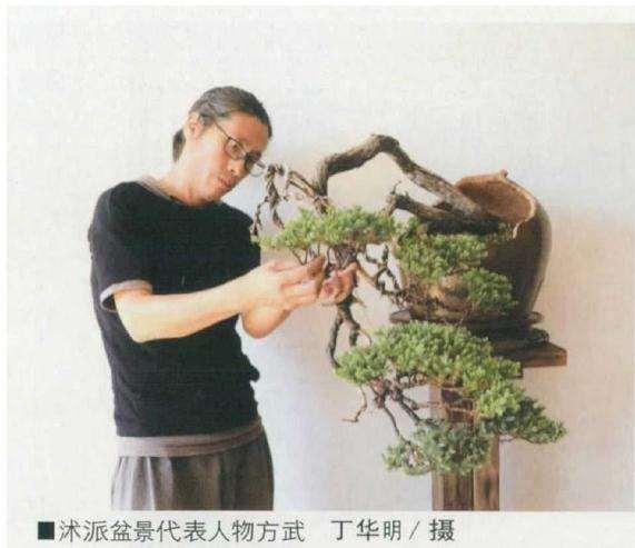 盆景产业成为沭阳县的强力引擎