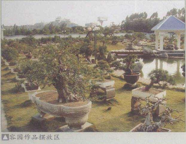 郭国廉的莆田容园盆景园