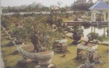 郭国廉的莆田容园盆景园 图片