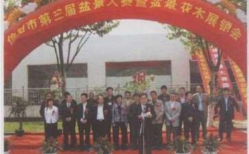 2009年信阳第三届盆景大赛 图片