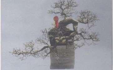2009 顺德获得中国盆景名镇的荣誉称号