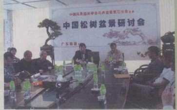 中国松树盆景研讨会在顺德大良举行
