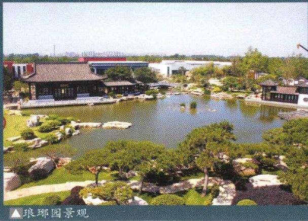 山东琅琊园第二届全国中青年盆景展