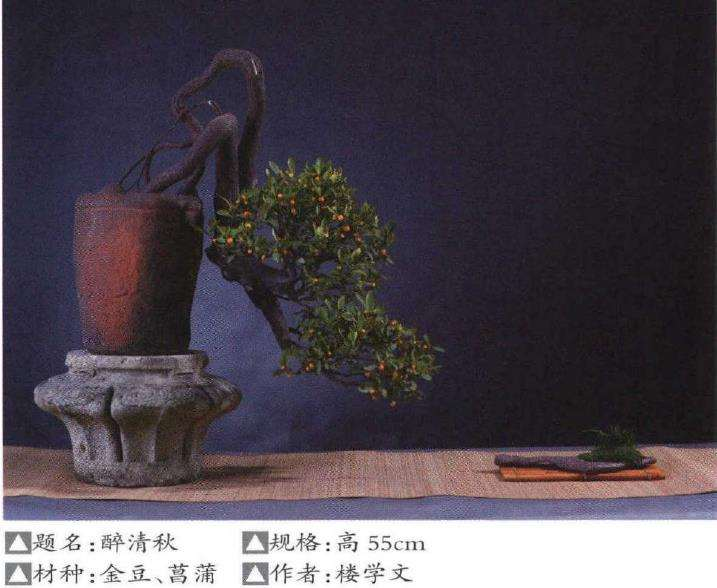 小品盆景怎么陈设的5个形式探讨