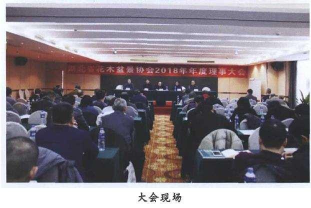 湖北省花木盆景年度理事大会