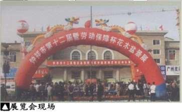 中国唐苑举办第二届中国唐风盆景展