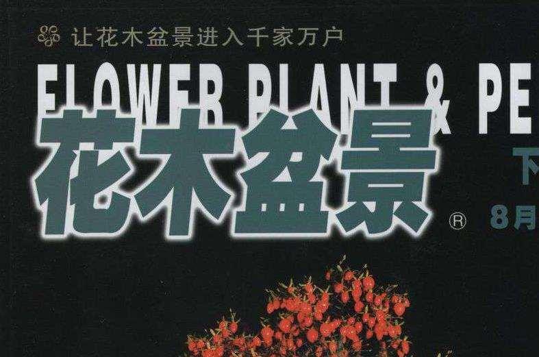 我查看《花木盆景》杂志 从1984年到现在