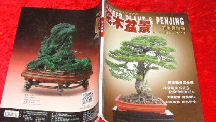 分享《花木盆景》杂志