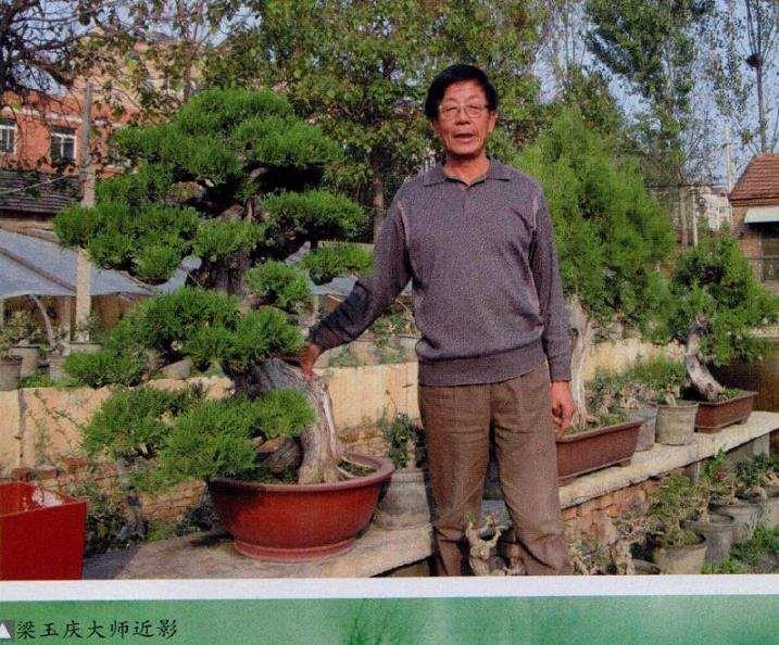 济南盆景艺术大师