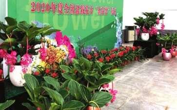 支持盆栽企业参加2020花卉短视频大赛