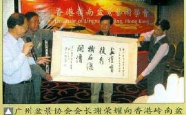 香港岭南盆景第二届代表大会 图片