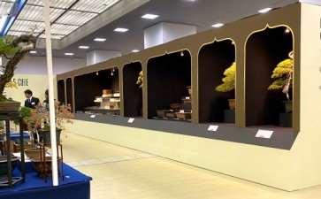 2019年第39届日本盆景大观展 第4部分