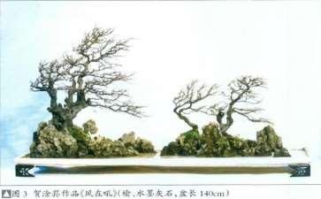 专访中国盆景艺术大师 贺淦荪 图片