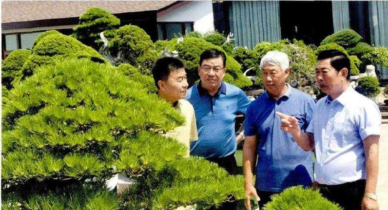 淮安盆景协会拜访江苏联盟